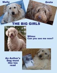 BigDogs-With Writing