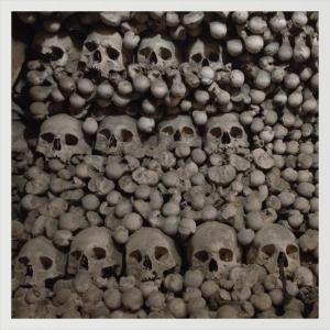 bones and more bones