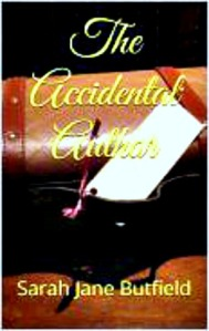 the accidental author 2