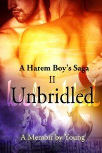 Harem Boy- II - Unbridled - image