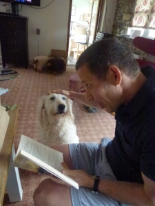Read the stories to your pet