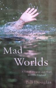 Madworldscover