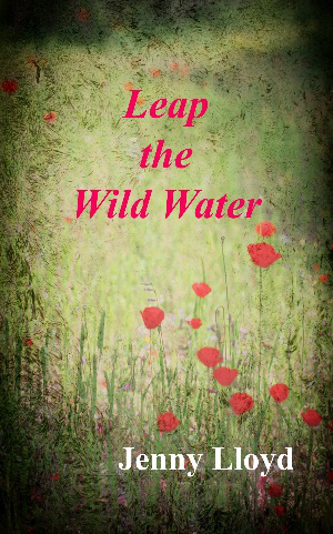 leap-the-wild-water